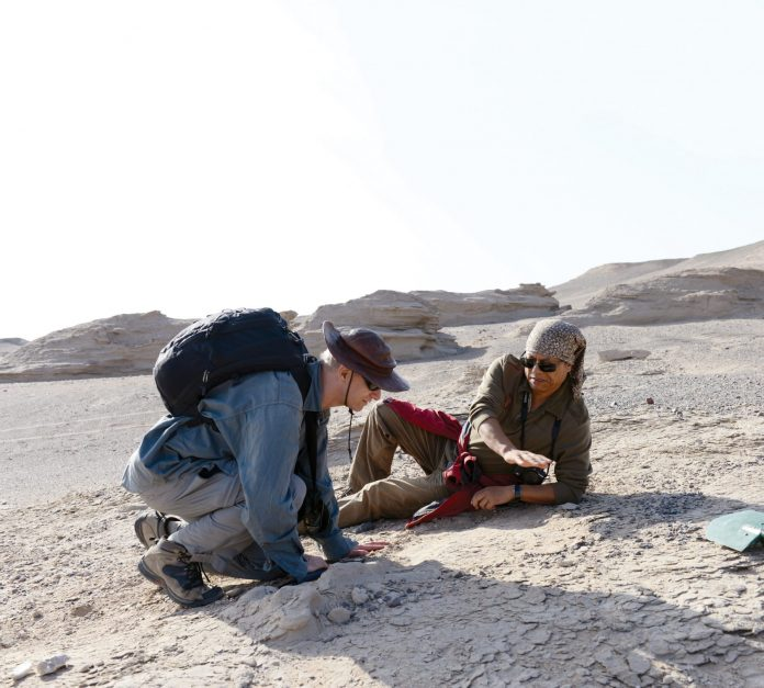 Palaeontologists Dr Wang Xiaolin and Dr Alexander Kellner collecting egg fossils