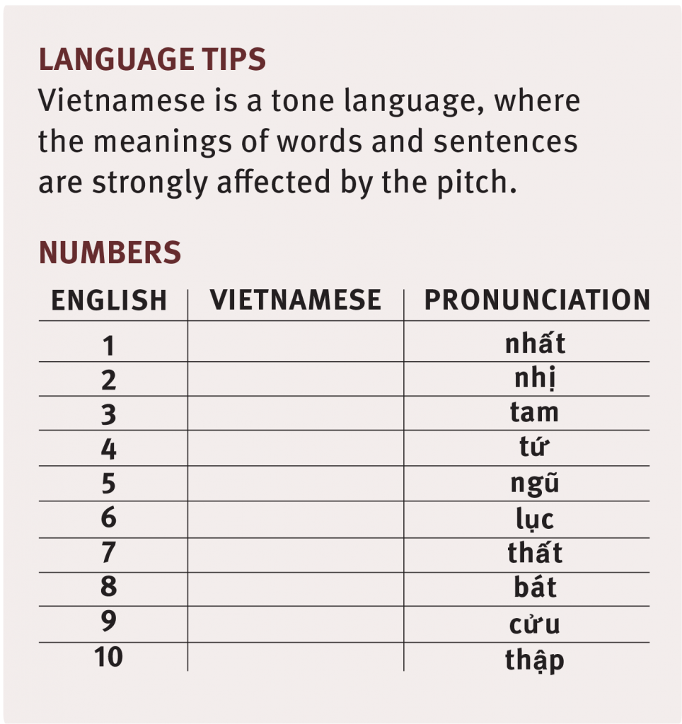 Vietnamese language tips
